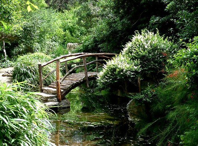 Il giardino zen piante in fiore e il mio giardino fiorito for Apri le foto di case di concetto