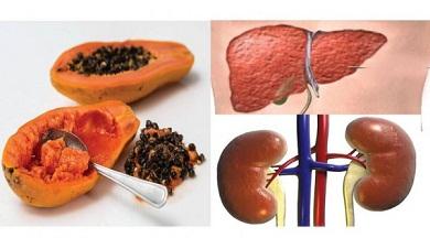 Cómo-desintoxicación-de-su-hígado-y-el-riñón