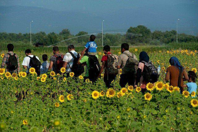 Η έξοδος της μικρομεσαίας τάξης από τη Συρία