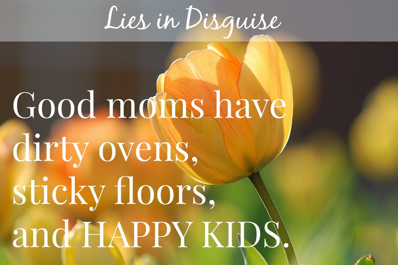 Lies in Disguise - Good moms have happy kids [from the jensens blog]