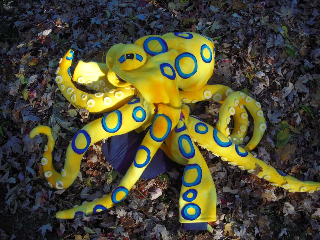 http://1.bp.blogspot.com/-qWNQ-Aqv-iA/UFcP6aQKcbI/AAAAAAAAFQo/SmYPzTTqixc/s1600/blueringedoctopus.jpg