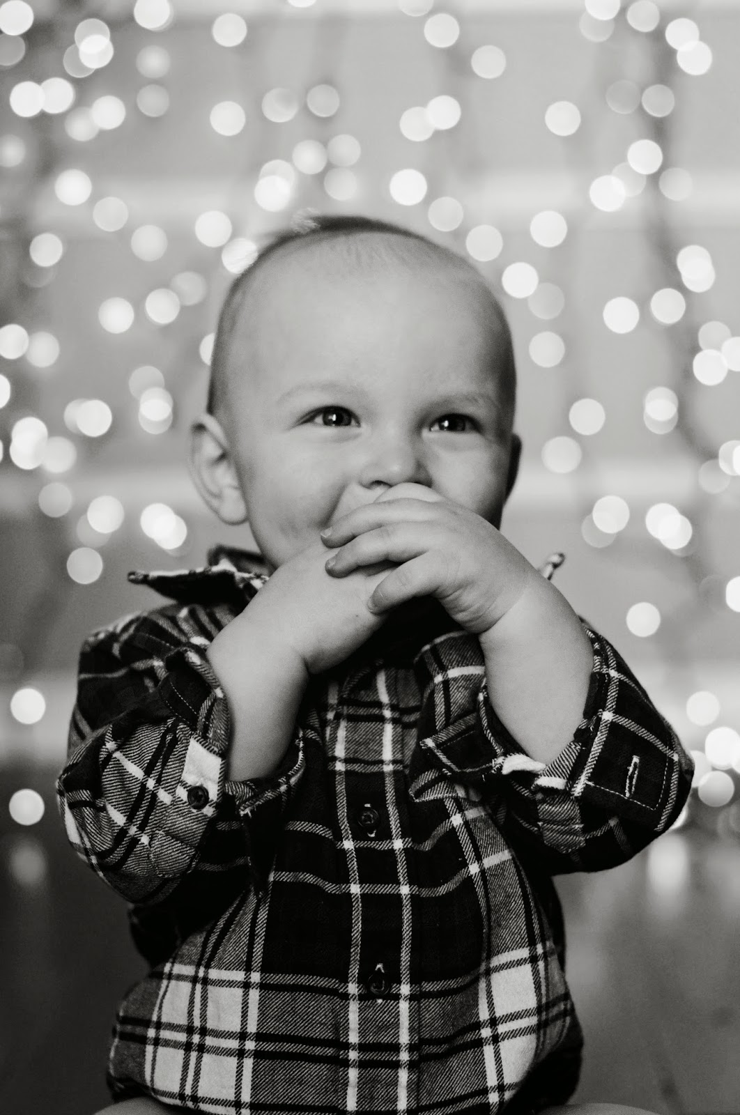 utah infant photographer