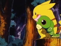 Pikachu y Caterpie