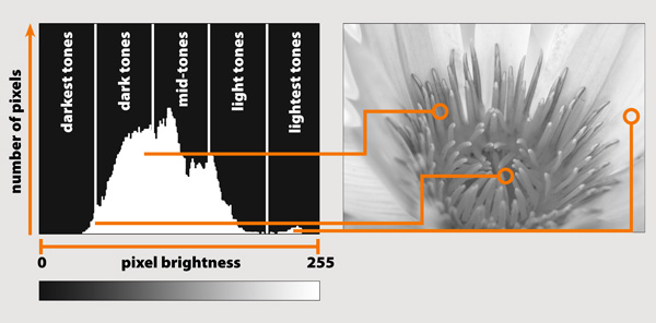 Understand Exposure and Histogram