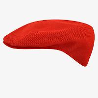 Kangol flat cap hat