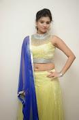 Priyanka glamorous photo shoot-thumbnail-2