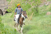 Sathi Thimmamamba movie photos gallery-thumbnail-5