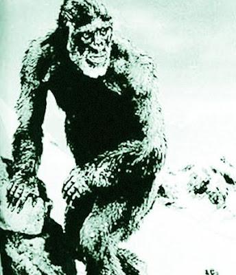 喜馬拉雅山 雪人手指:尼泊爾發現神祕手指骨骼 疑喜馬拉雅山雪人遺骸