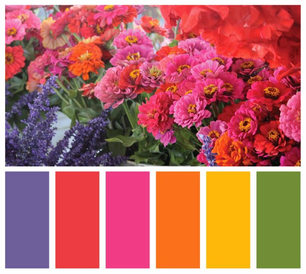 Color Swatch Palette made from a photo of flowers