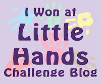 Owen won at little hands challenge bog