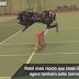Robô mais rápido que Usain Bolt agora também salta sobre obstáculos