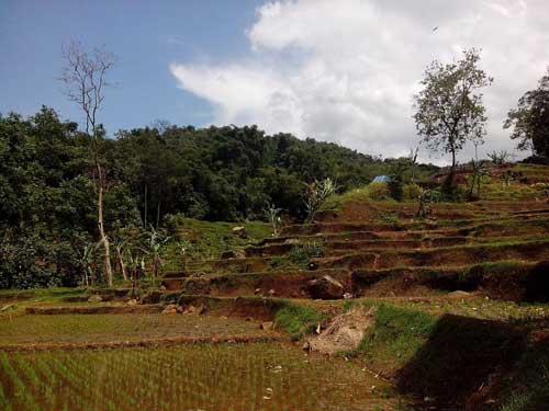 Alam Pegunungan 1