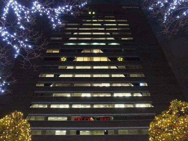 京セラ本社の巨大クリスマスツリー。