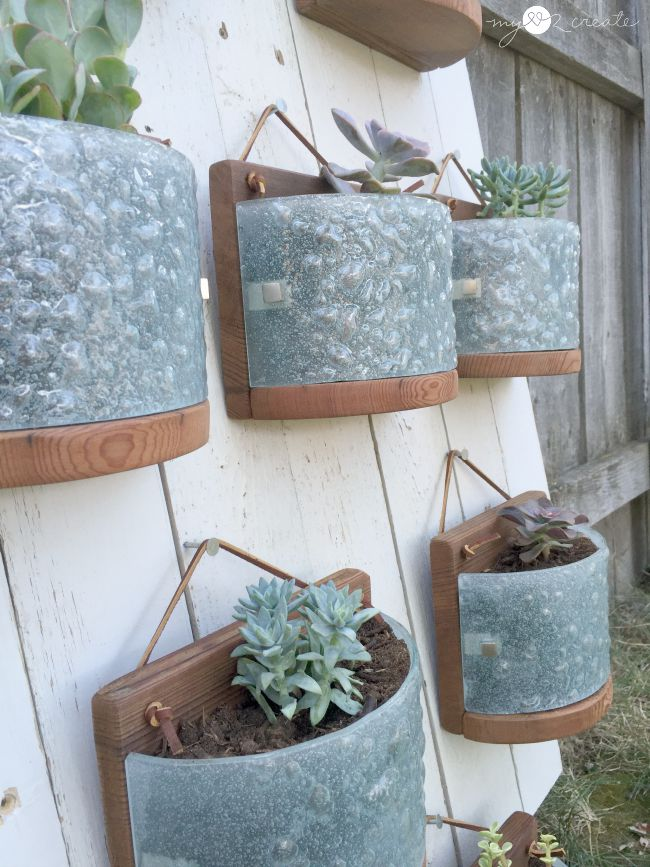 hanging succulent planters from light fixtures