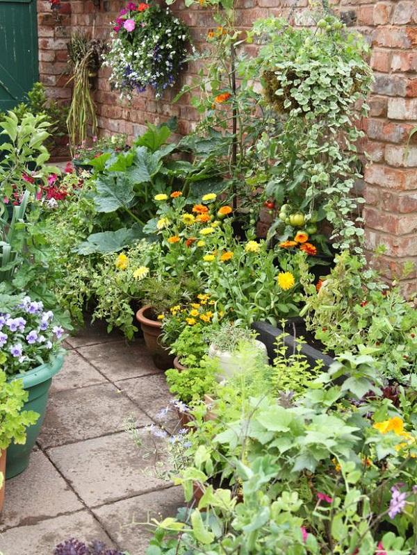 camino de entrada con plantas