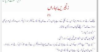 Riaz ul saliheen sharah in urdu