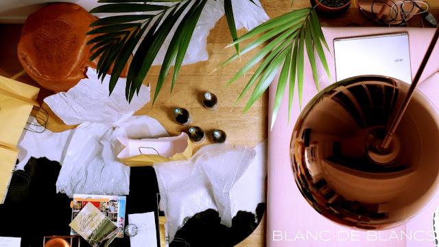 Viinimatkailijan arki - www.blancdeblancs.fi