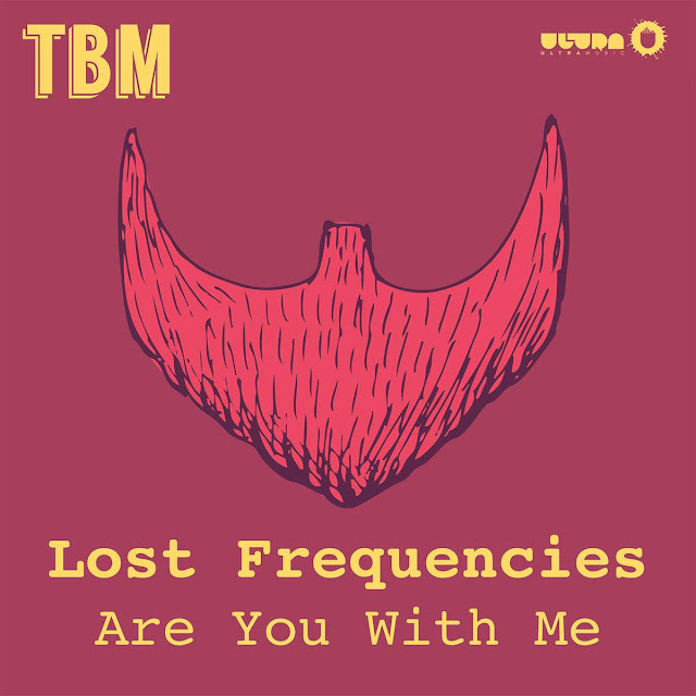 Lost Frequencies - Are You With Me