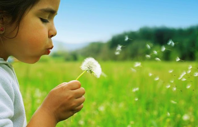 Growing up green teaching your kids to be eco conscious