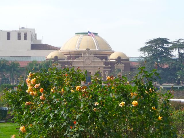 Experiencing Los Angeles: One Man\'s Vision: Exposition Park Rose Garden