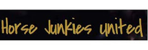 I also blog for Horse Junkies United!