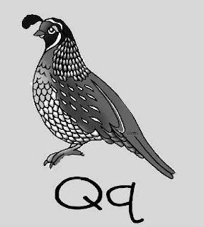 Q is for Quail ~ My Father's World