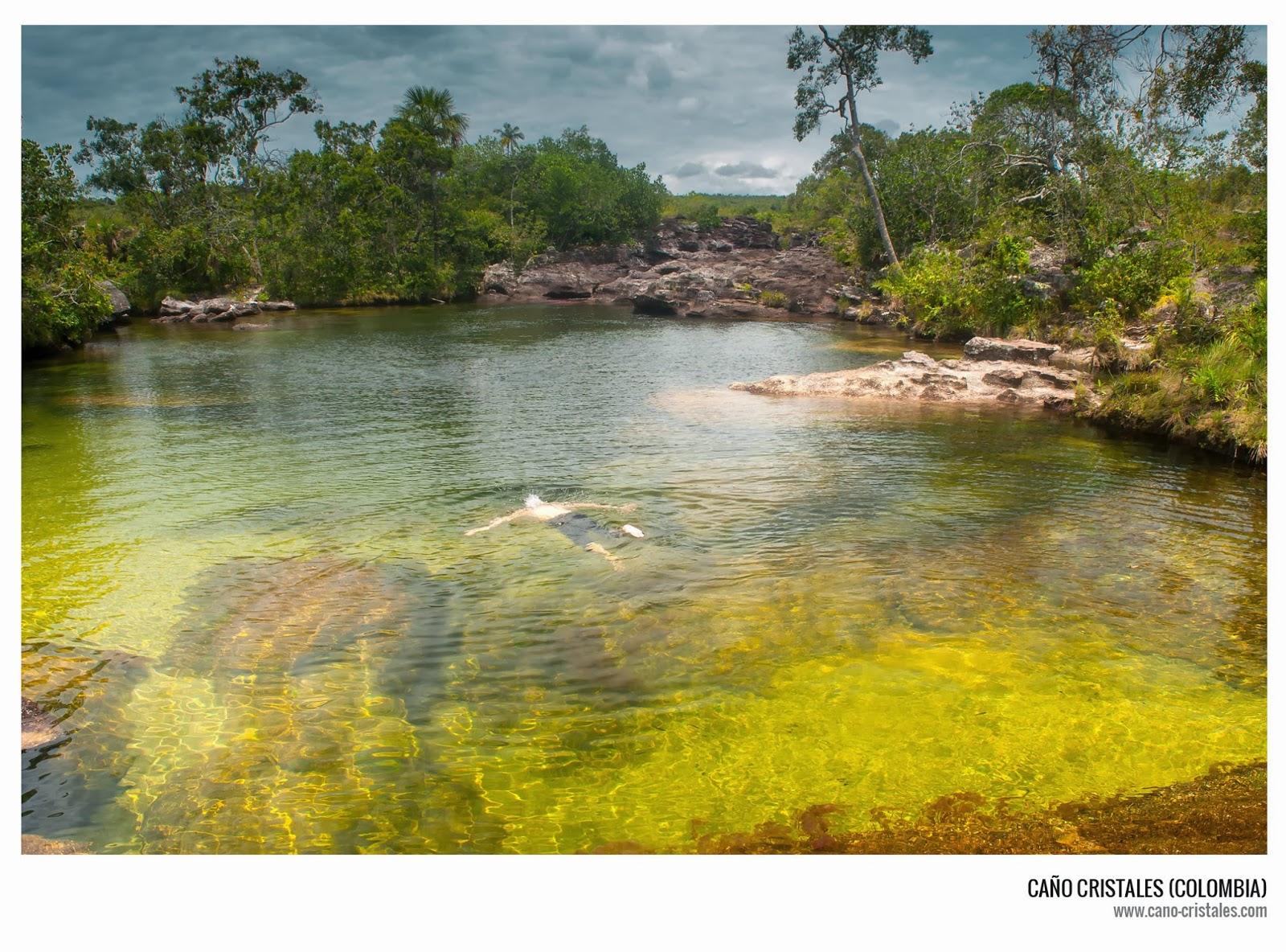 En Caño Cristales nadar es posible