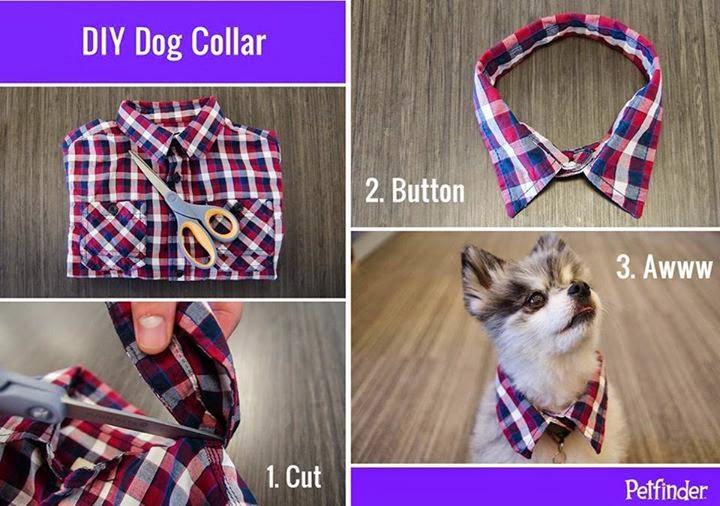 Step By Step Dog Collar Diy Tutorials..