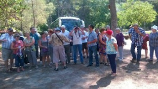 Divjakë-Karavasta National Park Visited by French Tourists
