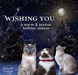 Happy Holidays Maxwell, Faraday and Allie!