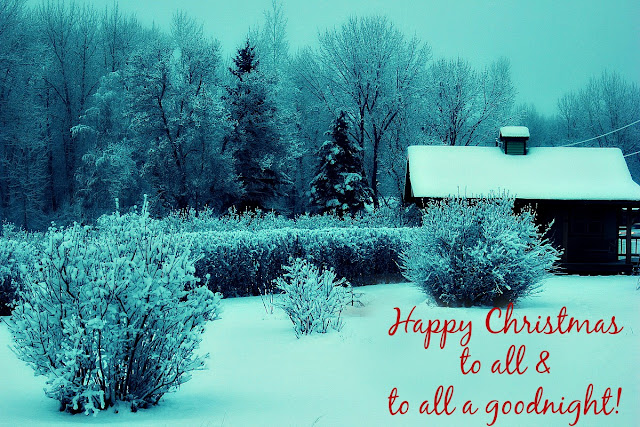 christmas, winter photography, http://bec4-beyondthepicketfence.blogspot.com/2015/12/merry-christmas.html