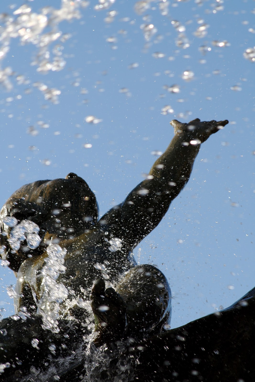 berlin-jubilee-775-ans-fontaine-neptune