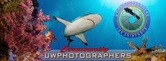 UWphotographers community