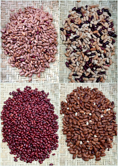varieties of rajma