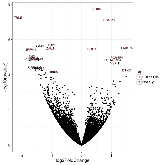 Repel overlapping text labels in ggplot2