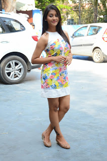 Actress Pooja Jhaveri Latest Picture Shoot Gallery in Floral Short Dress  048.JPG