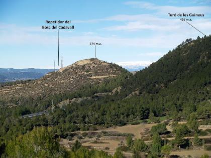 El Turó de les Guineus i les antenes del repetidor del Bosc del Cadavall des de la vall de Can Soler