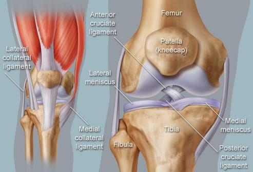 Pengedar Shaklee Putrajaya, sakit lutut, sakit sendi