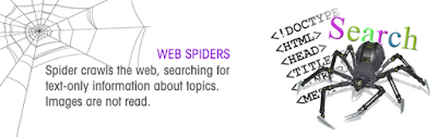 google bot web-spider-crawl-website