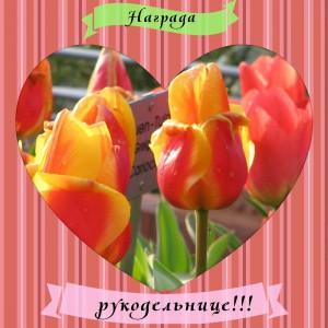 награда от Ани