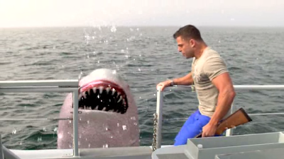 Donnie kicks a shark