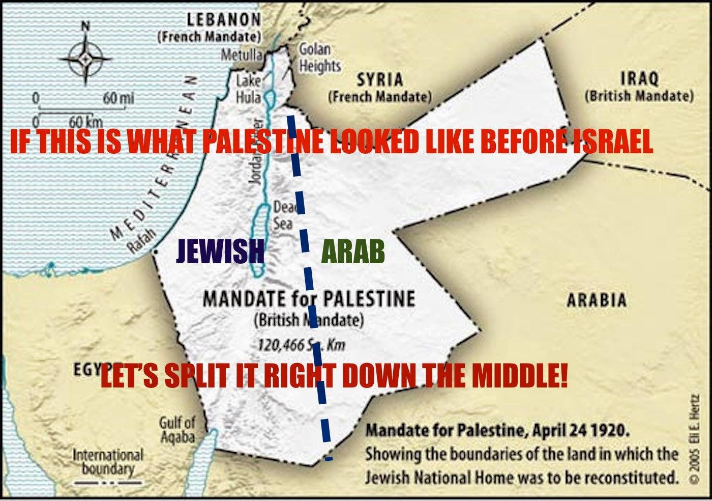 arab israeli peace agreements draiman