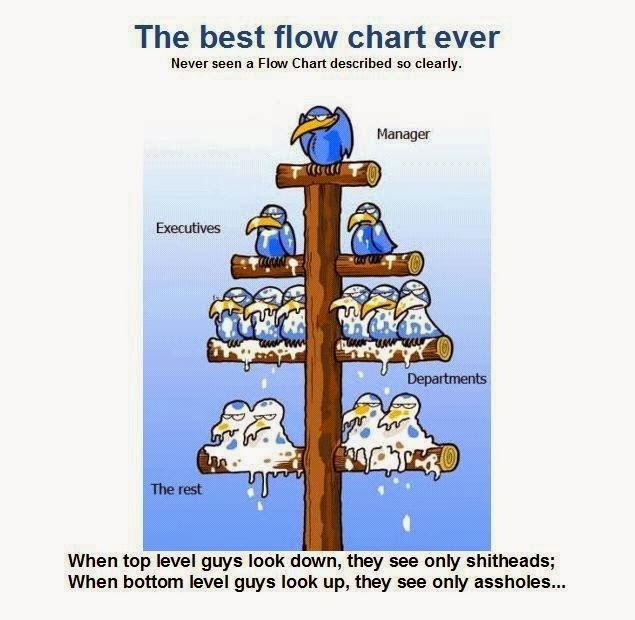 The Best Flow Chart Ever