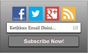 Membuat Widget Berlangganan Email dengan Social Media