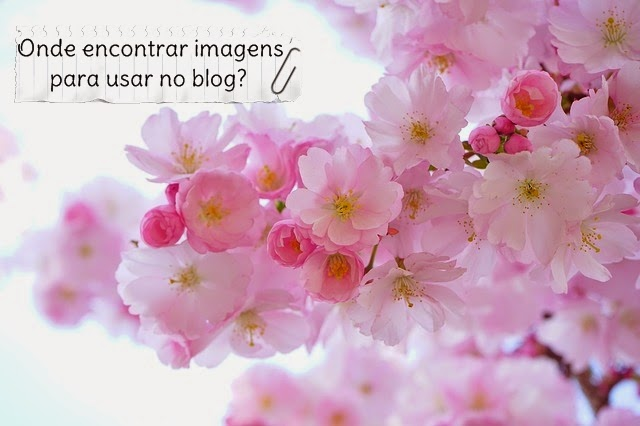 Onde achar imagens para usar no blog?