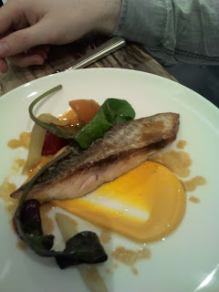 Mackerel at Arbutus
