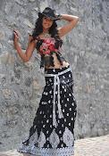 Illeana D'Cruz latest glamorous Photos-thumbnail-6