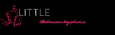 LITTLEDIMENSIONS