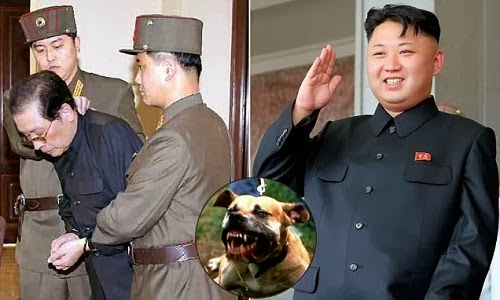 execution by dogs north korea