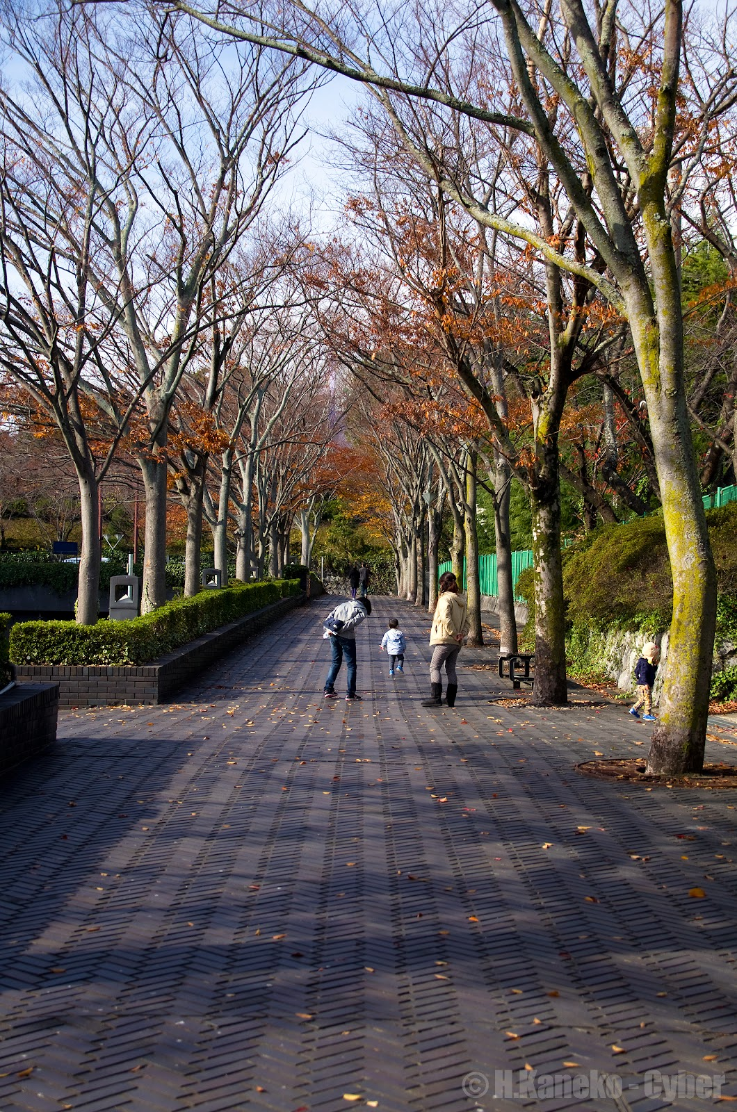 浜松城へ向かう道のり
